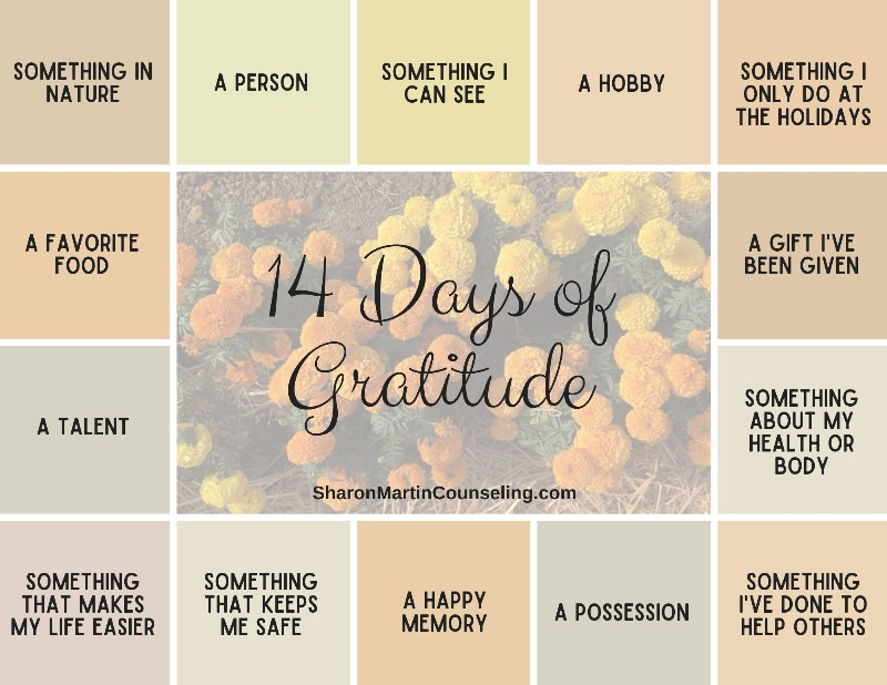 14 Day Gratitude Journal