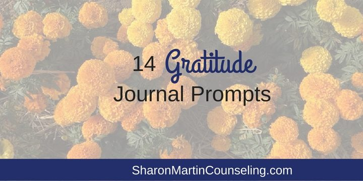 14 Gratitude Journal Prompts